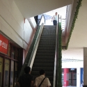 ERDU_tekoče stopnice_04.jpg